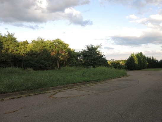 Lot, Lots/Land/Farm - Roanoke, VA (photo 4)