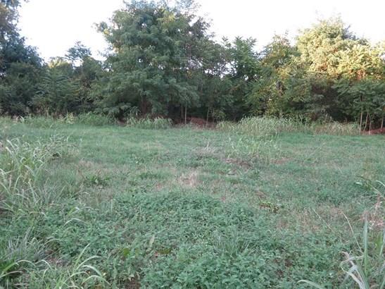 Lot, Lots/Land/Farm - Roanoke, VA (photo 5)
