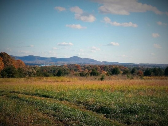Land (Acreage), Lots/Land/Farm - Moneta, VA (photo 1)