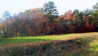 Lots/Land/Farm, Commercfial/Industrial - South Boston, VA (photo 1)