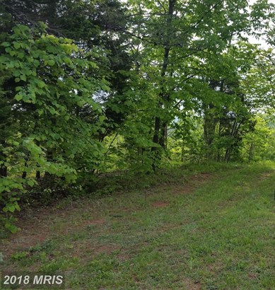 Lot-Land - DILLWYN, VA (photo 2)