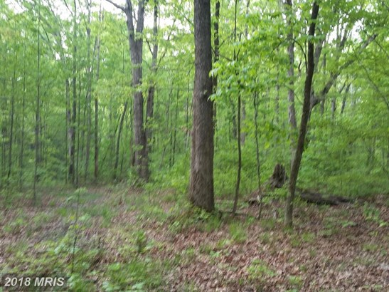 Lot-Land - DILLWYN, VA (photo 4)