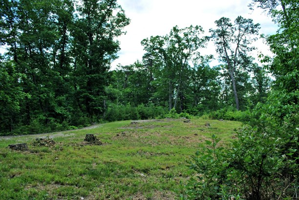 Land (Acreage), Lots/Land/Farm - Elliston, VA (photo 1)