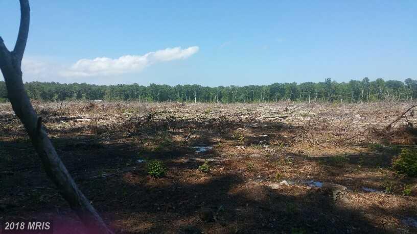 Lot-Land - SAINT INIGOES, MD (photo 1)