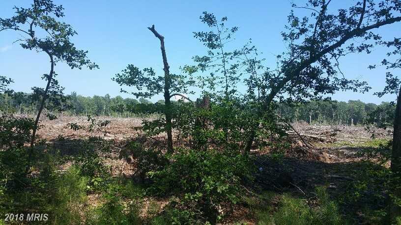Lot-Land - SAINT INIGOES, MD (photo 2)