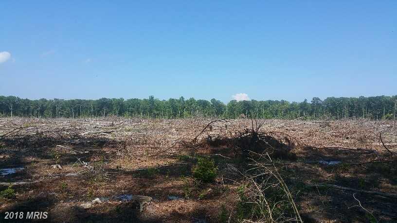 Lot-Land - SAINT INIGOES, MD (photo 4)