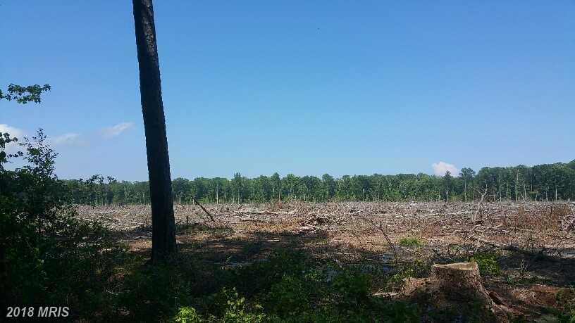 Lot-Land - SAINT INIGOES, MD (photo 5)