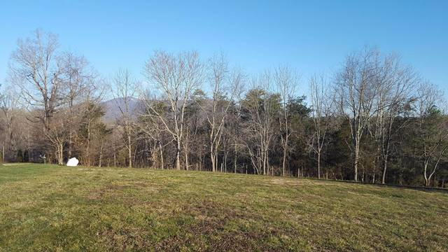 Lot, Lots/Land/Farm - Boones Mill, VA (photo 2)