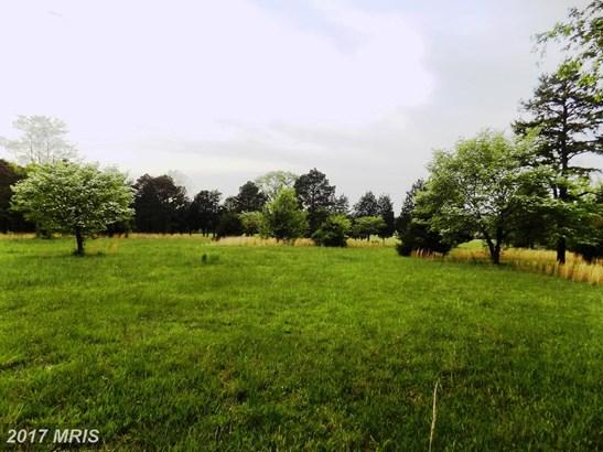Farm House, Detached - REMINGTON, VA (photo 4)