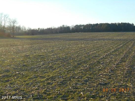 Lot-Land - MONTROSS, VA (photo 3)