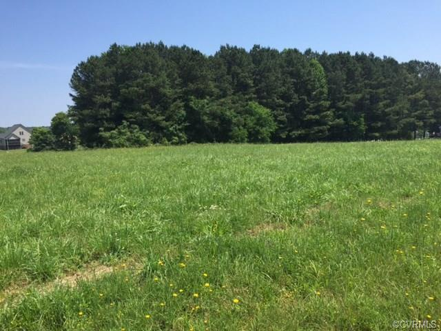 Lots/Land - Amelia, VA (photo 2)