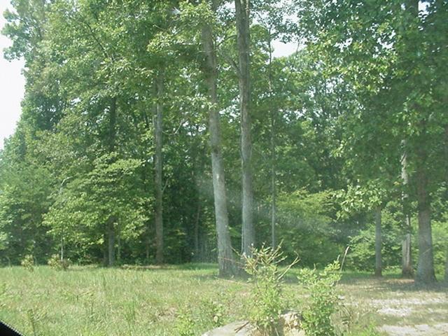 Lot, Lots/Land/Farm - Wirtz, VA (photo 4)