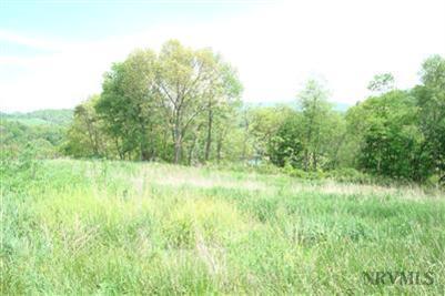 Land - Pembroke, VA (photo 5)