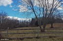 Lot-Land - DICKERSON, MD (photo 1)