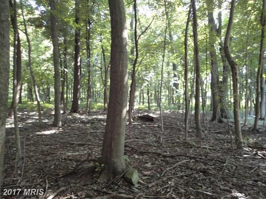 Lot-Land - CASCADE, MD (photo 4)