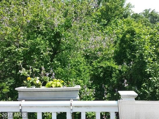 Colonial, Detached - HAVRE DE GRACE, MD (photo 2)