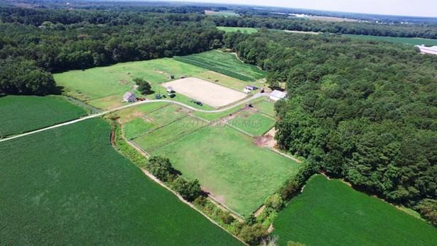 Farms - pocomoke, MD (photo 1)