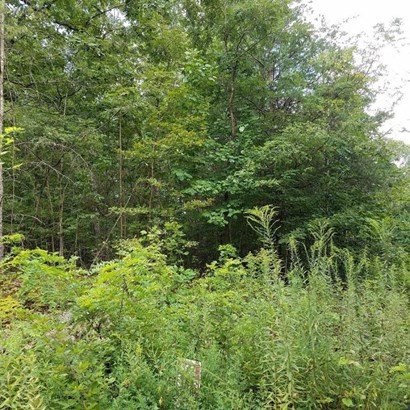 Lot, Lots/Land/Farm - Goodview, VA (photo 2)