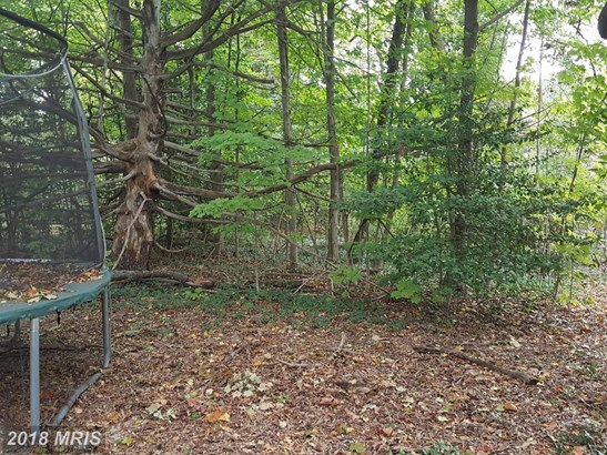 Lot-Land - SILVER SPRING, MD (photo 3)