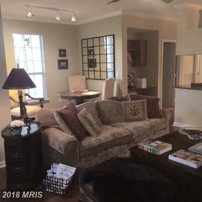 Garden 1-4 Floors, Other - HERNDON, VA (photo 5)