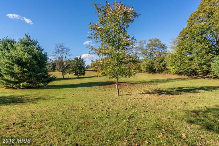 Lot-Land - SPERRYVILLE, VA (photo 2)