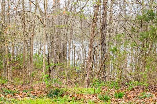 Land/Lots - Bracey, VA (photo 3)