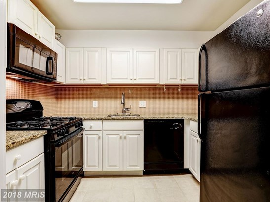 Garden 1-4 Floors, Colonial - SUITLAND, MD (photo 5)