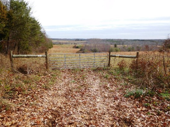 Lots/Land/Farm, Farmland, Orchard, Horse Farm, Beef Cattle - Nathalie, VA (photo 2)