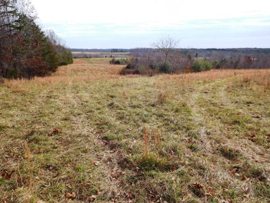 Lots/Land/Farm, Farmland, Orchard, Horse Farm, Beef Cattle - Nathalie, VA (photo 3)