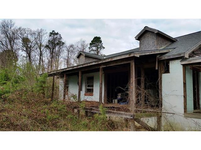 Cape, Single Family - North Dinwiddie, VA (photo 1)