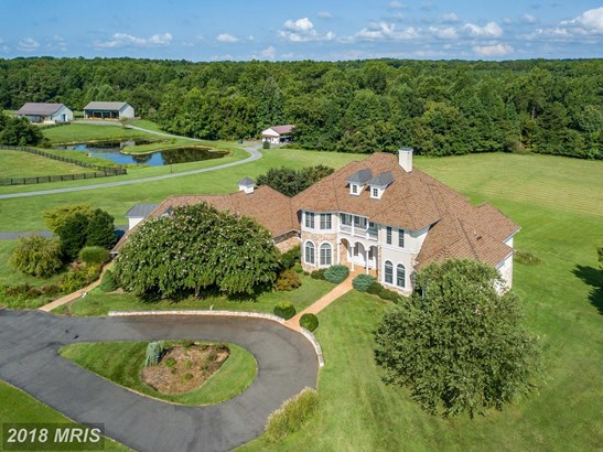 French Country, Detached - GOLDVEIN, VA (photo 4)