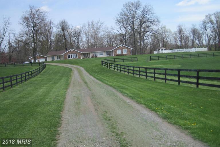 Rancher, Detached - BLUEMONT, VA (photo 1)