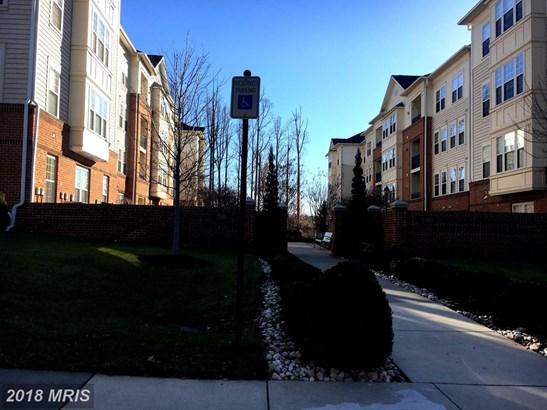 Garden 1-4 Floors, Contemporary - ELLICOTT CITY, MD (photo 3)
