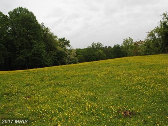 Lot-Land - WOODBINE, MD (photo 4)