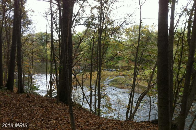Lot-Land - PATTERSON CREEK, WV (photo 2)