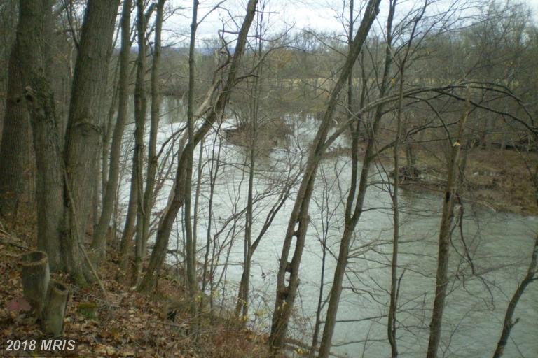 Lot-Land - PATTERSON CREEK, WV (photo 4)