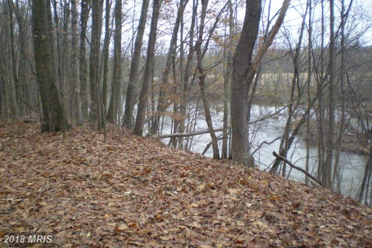 Lot-Land - PATTERSON CREEK, WV (photo 5)