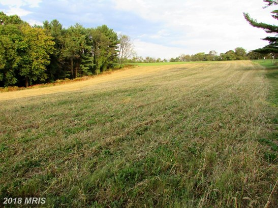 Lot-Land - WESTMINSTER, MD (photo 3)