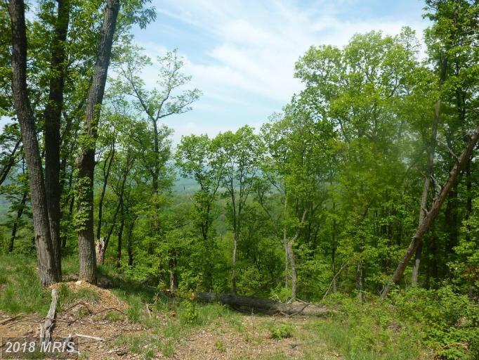 Lot-Land - HEDGESVILLE, WV (photo 5)