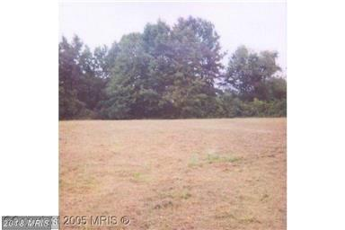 Lot-Land - FEDERALSBURG, MD (photo 1)