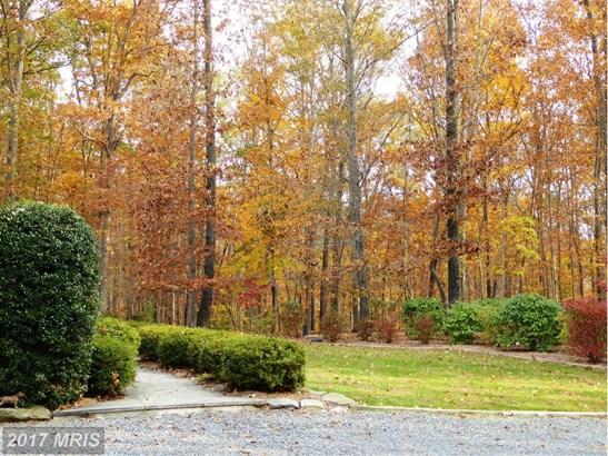 Manor, Detached - MIDDLEBURG, VA (photo 4)