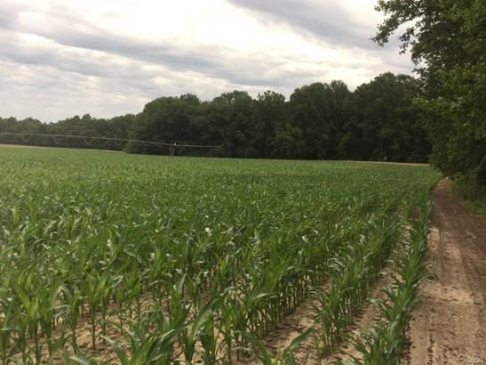 Farms - Laurel, DE (photo 4)