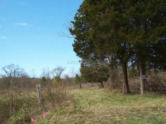 Unimprvd Lots/Land - Bivalve, MD (photo 4)