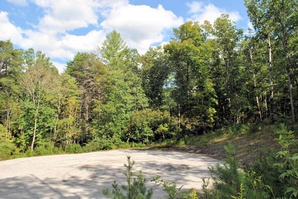 Land (Acreage), Lots/Land/Farm - Elliston, VA (photo 2)