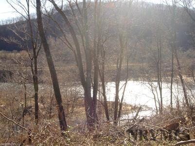 Land - Pembroke, VA (photo 2)