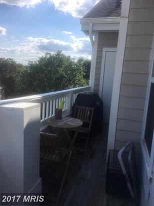 Garden 1-4 Floors, Contemporary - CENTREVILLE, VA (photo 2)