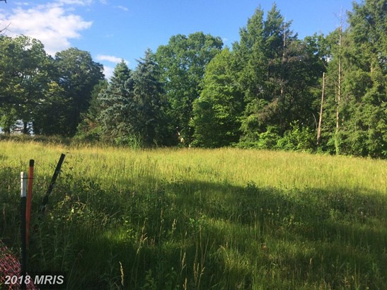 Lot-Land - LINTHICUM, MD (photo 3)