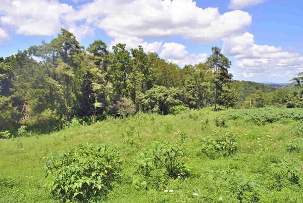 Land - Hiwassee, VA (photo 4)