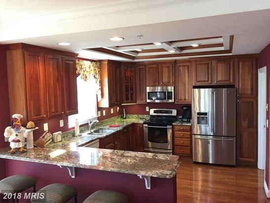 Penthouse, Contemporary - BELCAMP, MD (photo 4)