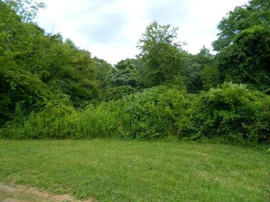Lot, Lots/Land/Farm - Copper Hill, VA (photo 1)